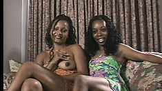 Black lesbian babes sit on the couch and chat before undressing
