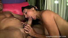Persia Monir is extremely excited to give her man a rim job and suck his cock