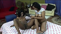 Busty black lesbians savor the sweet taste of each other's juicy cunts