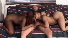 Ebony hotties Arizona and Rikki Myst having fun with a huge black cock