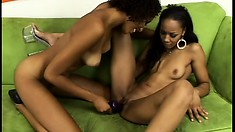 Krystal and Misty Stone fuck each other's cunts at the same time with a huge dildo