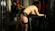 The lesbian bondage lesson in now in session and this mistress means business