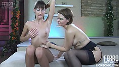 Florence A wears open-crotch pantyhose and gets licked by Charlotte