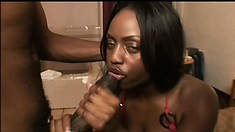 Busty black porn star with amazing curves gets fucked like a bitch